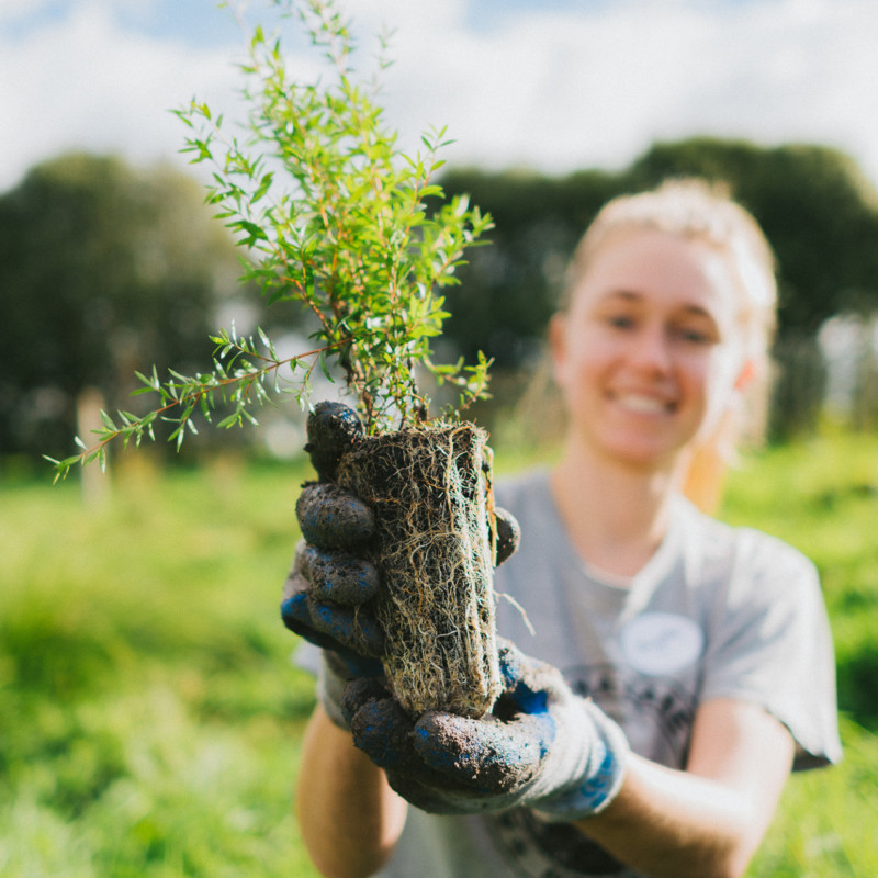 Conservation & Sustainability